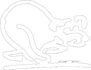 logo_baeren_weiss